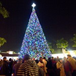 Jaclyn Stapp to Read to Over 30,000 at Delray Beach Tree Lighting!